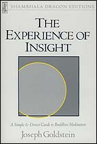 the-experience-of-insight