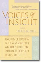 voices-of-insight