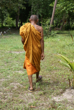 tms-walking-monk2